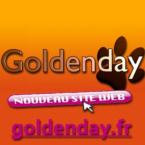 Détails : Goldenday-Homesitting